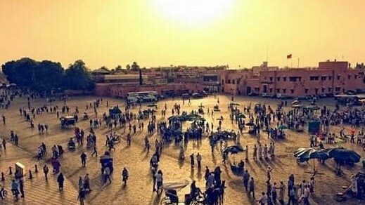 Surviving Marrakesh