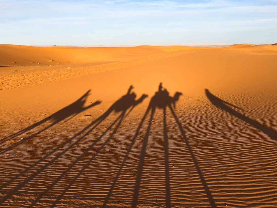 3 Day Trip to the Sahara Desert With Marrakech Desert Trips