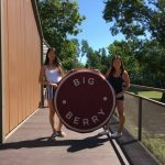 Glamping in Slovenia with Big Berry