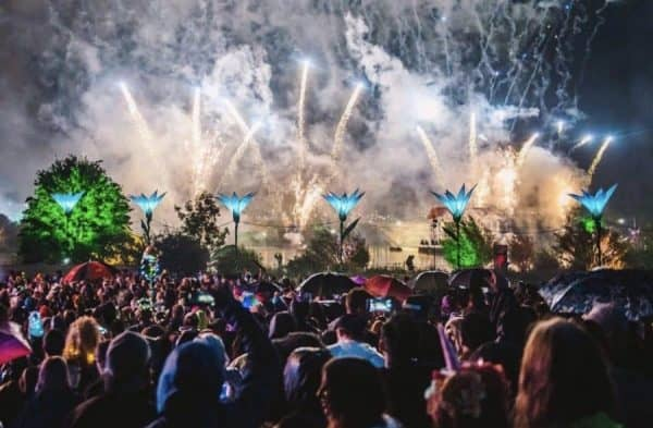 7 Fun Festivals You Should Attend When in Sydney
