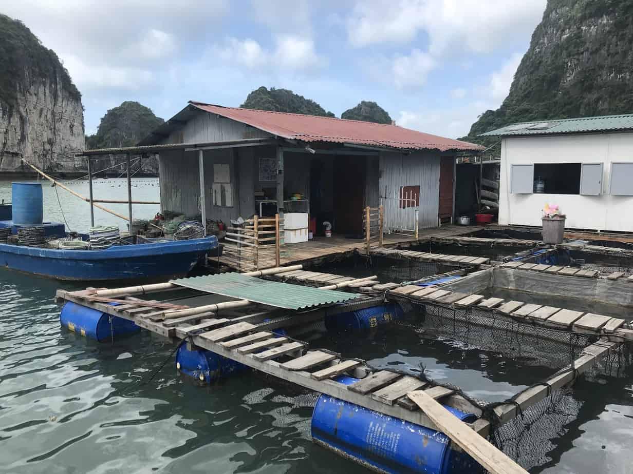Floating Village and Oyster Farm | MVMT Blog