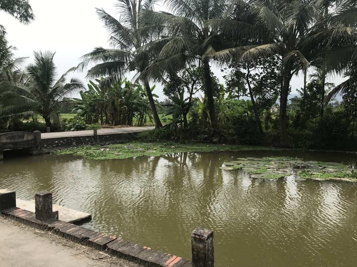 Yen Duc Village   MVMT Blog
