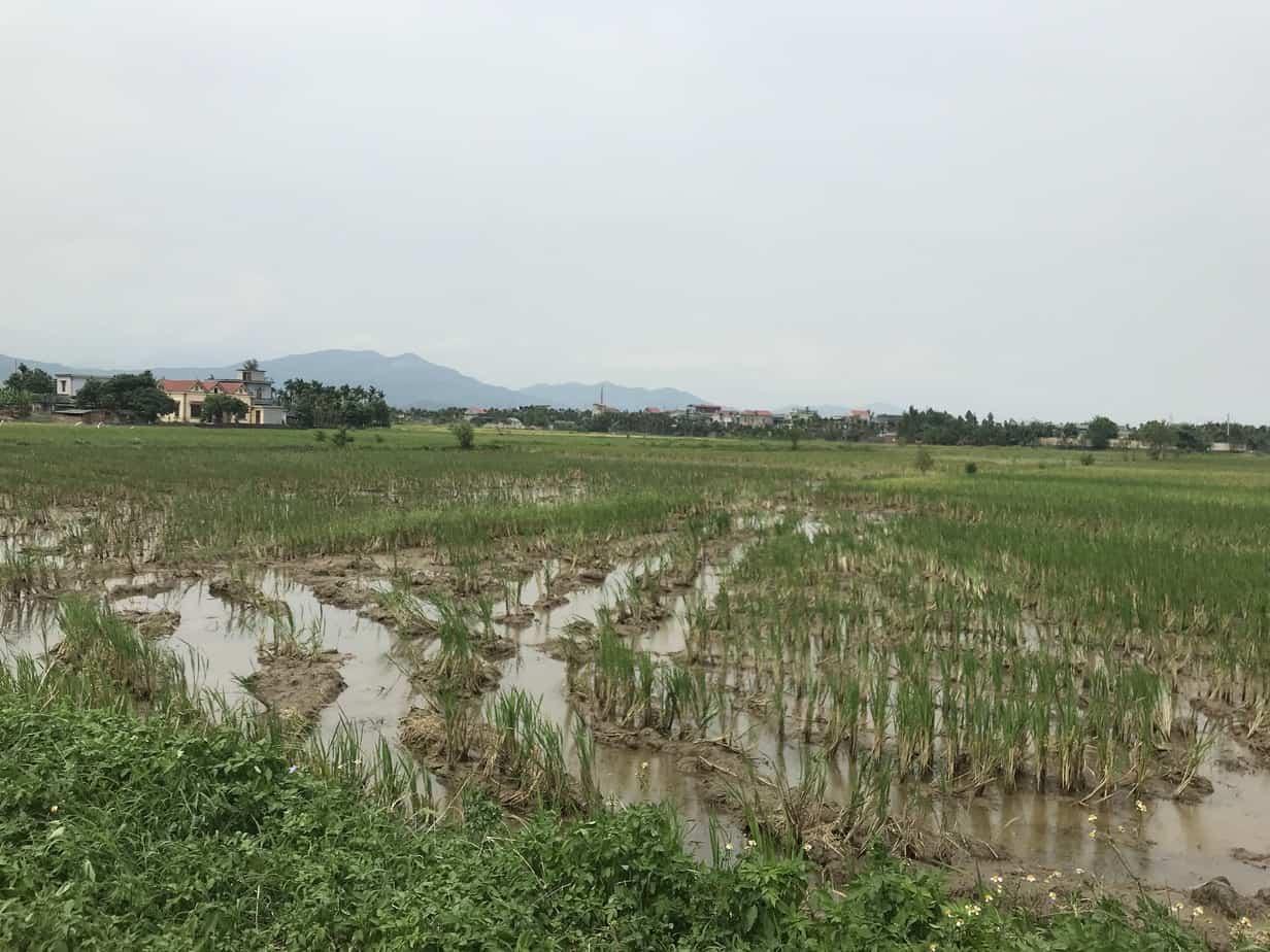 Yen Duc Village | MVMT Blog