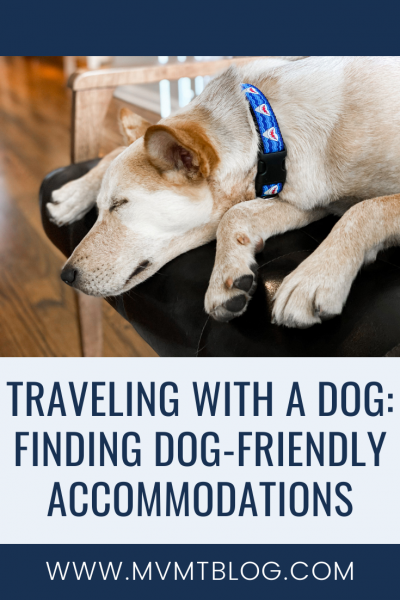 Traveling With a Dog: Finding Dog-Friendly Accommodations
